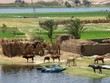 Leinwandbild Motiv egipto 12