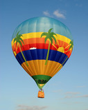 Tropical theme on hot air balloon