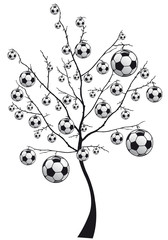 albero sport