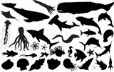 Marine life silhouettes (more detailed versions available) poster