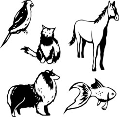 Five stylized vector illustrations of domesticated animals