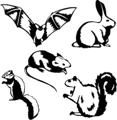 Five stylized vector illustrations of small mammals and rodents