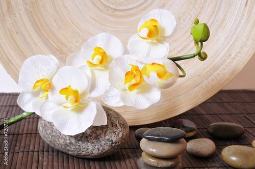 Leinwandbild Motiv Wellness Steine Orchideen