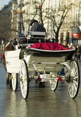 Elegant white cab