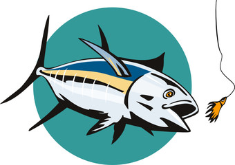 Albacore Tuna taking the bait