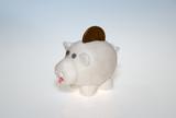 Manually made Piggy bank poster