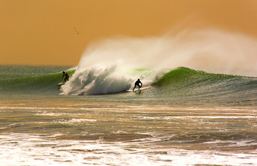 Fantasy Surfing