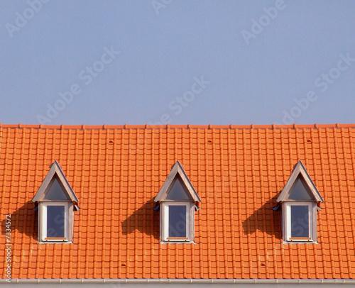 Chien assis sur toiture photo libre de droits sur la banque d 39 - Chien assis sur toiture ...