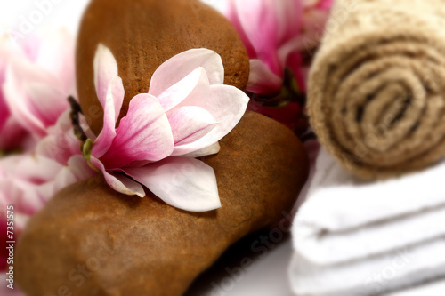 magnolia flower in spa