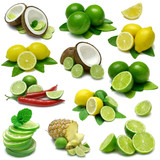 Lime and Lemon Combinations - Sampler with clipping paths-