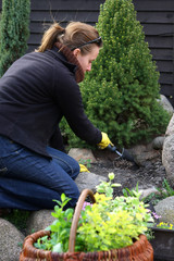 spring cleaning in garden