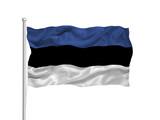Estonia Flag 2 poster