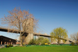 Brooklyn Bridge, small park in the foreground, New York poster