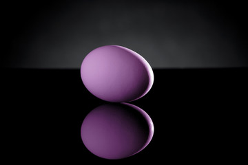 Purple Egg on Black Acrylic with Reflection