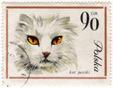 white Persian cat on a vintage post stamp poster