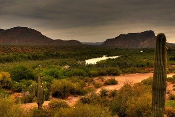 Desert Storm Approaching