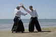 aikido sur la plage