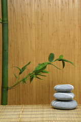 Zen stone and green Bamboo