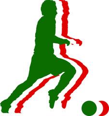 Italy soccer flag