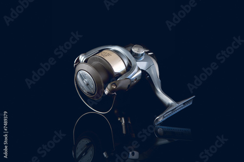 Fishing reel, mounted
