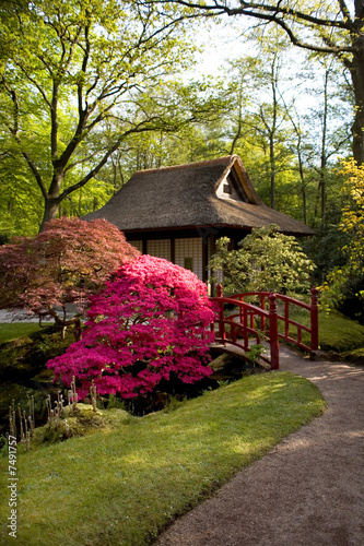 Japanese tea-house