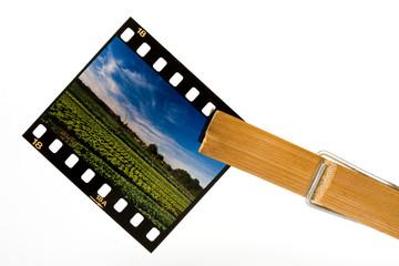 vacances photo souvenir photographie paysage négatif argentique