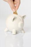économie tirelire pièce sou argent finance budget euros cochon poster