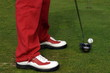 Golf detail.