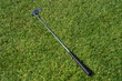 Golf club lying in the grass.