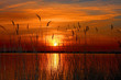 Leinwandbild Motiv Sunset