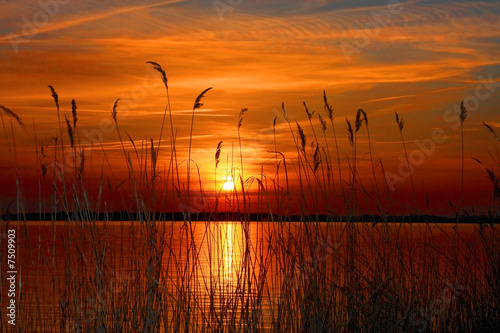 Aluminium Zonsondergang Sunset