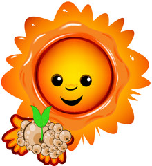 Sun with a plantlet