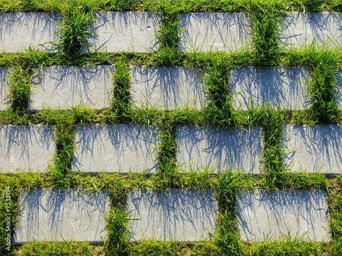pflastersteine gras von rotschwarzdesign lizenzfreies. Black Bedroom Furniture Sets. Home Design Ideas
