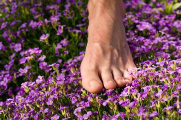 Fußgesundheit: Fuß und Blumen
