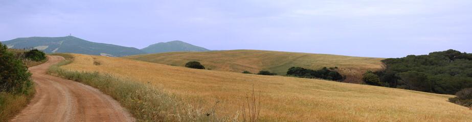 Strada di campagna Sardegna