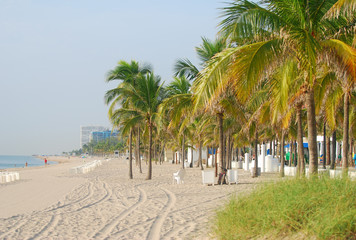 Florida beach scenery