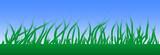Campo de hierba poster
