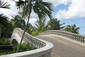 Tropical Bridge
