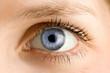 Auge - Blau - 7573548