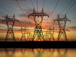 Electric powerlines