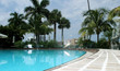 Elegant Tropical Outdoor Swimming Pool, Palm Beach