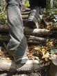 Wandern über Stock und Stein