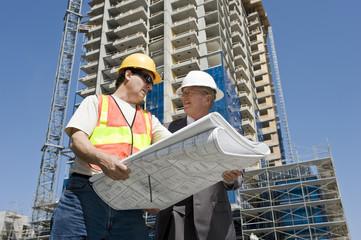 Developer & Contractor