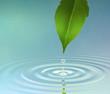 Leinwanddruck Bild Water Ripple