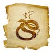 Snake  Zodiac icon, isolated on white background.