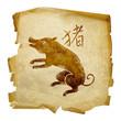 Pig Zodiac icon, isolated on white background.