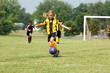 Young Soccer Player Prepares to Kick