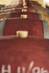 Corked Wine Casks