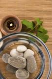 alternative medicine. ginkgo biloba therapy poster