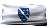 Bosnia and Herzegovina flag  bg poster